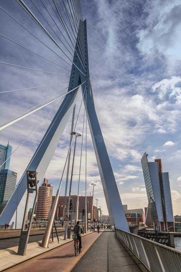 Rotterdam, ponte: de Erasmusbrug fotografia de stock