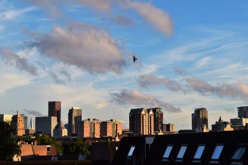 Rotterdam, una vista da sopra immagine stock