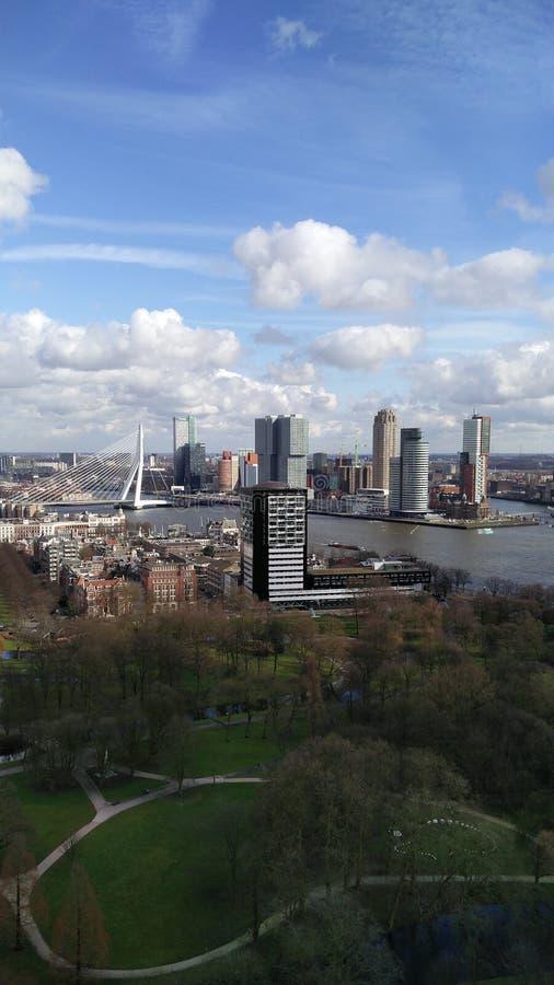 Rotterdam, Wilhelminapier fotografia stock