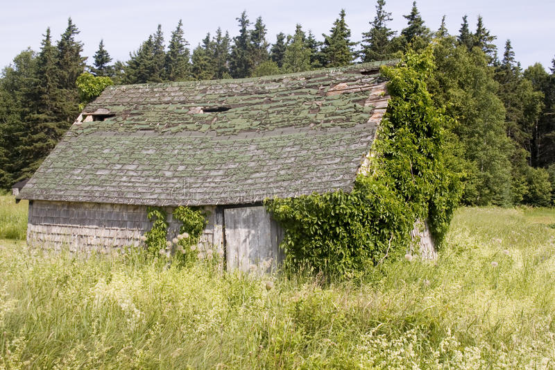 Download Rotting building stock image. Image of building, rotting - 26208221