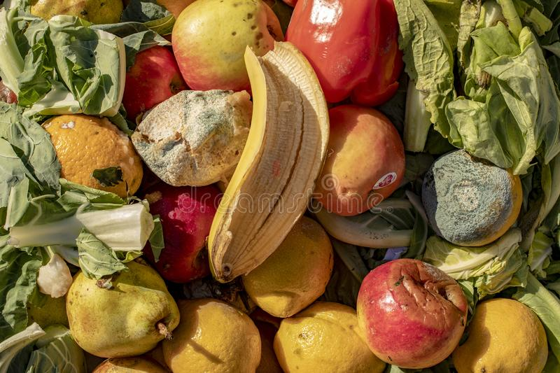 Rotting Vegetables Stock Photo Image Of Farming Decomposing 6870794