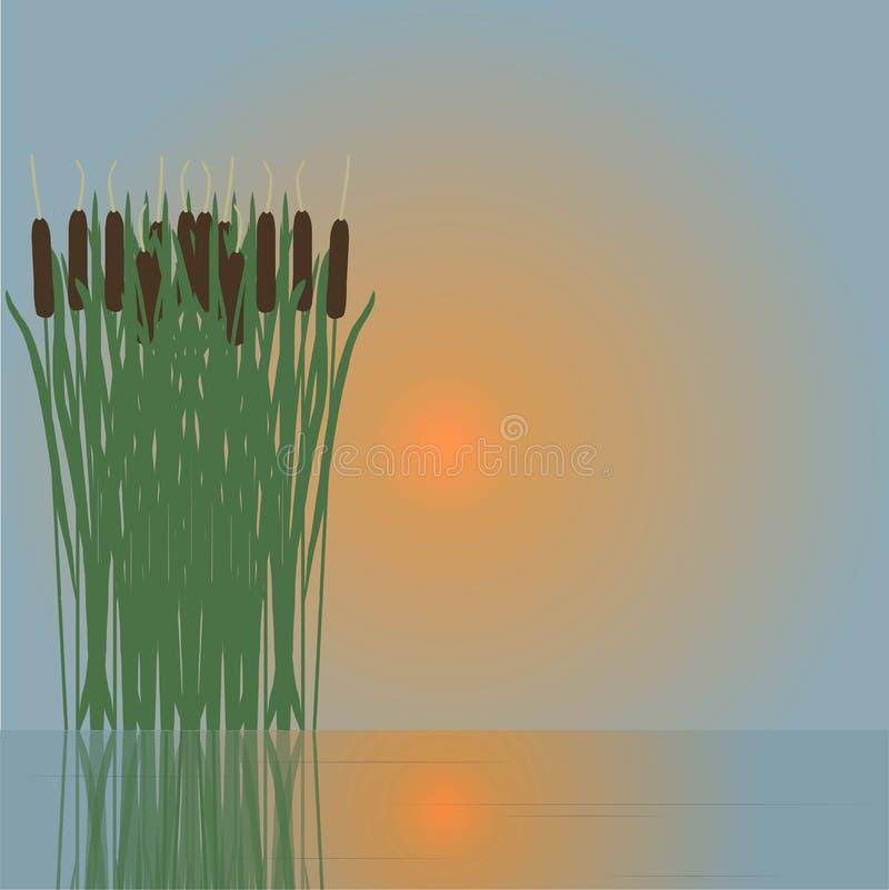 Rotting som reflekterar i vattnet, röd sol, vektor royaltyfri illustrationer