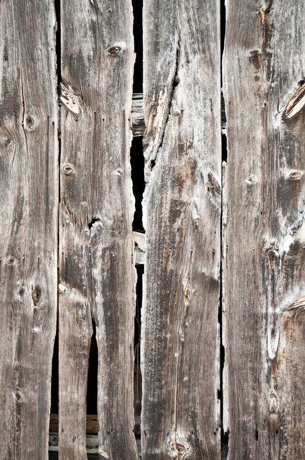 Rotting Wood Boards