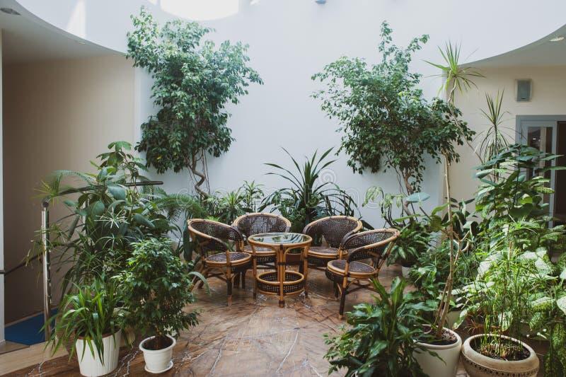 rottingmöblemang som omges av gröna växter i en rymlig korridor arkivbilder