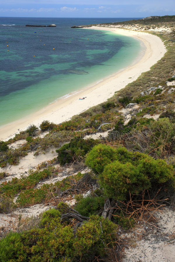 Rottnest海岛,澳大利亚西部 库存图片