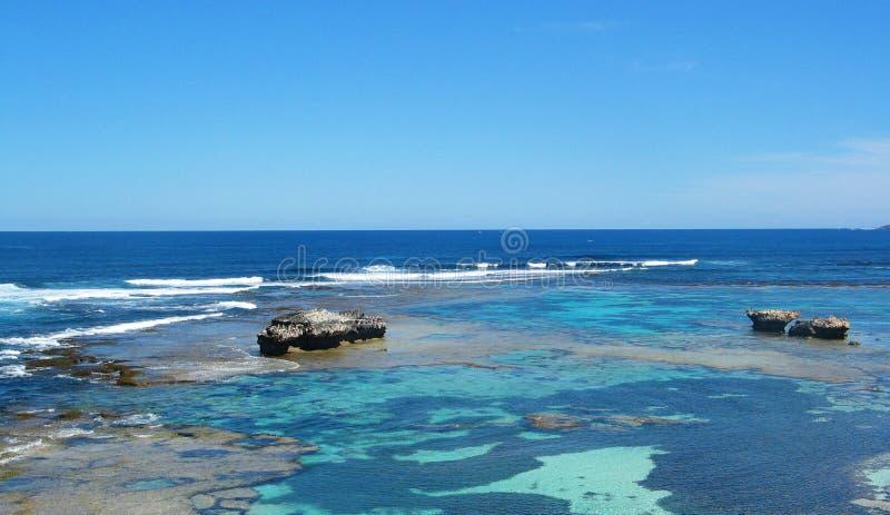 rottnest的海岛 库存图片