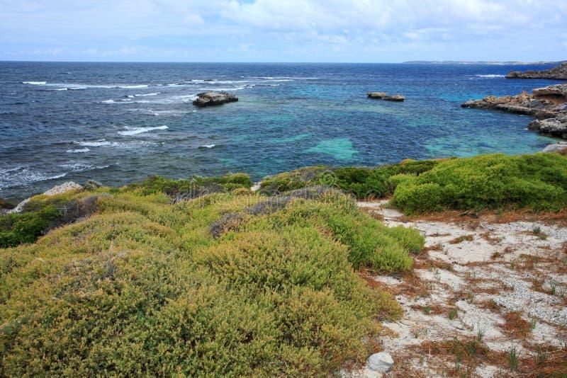 Rottnest ö, västra Australien arkivfoto