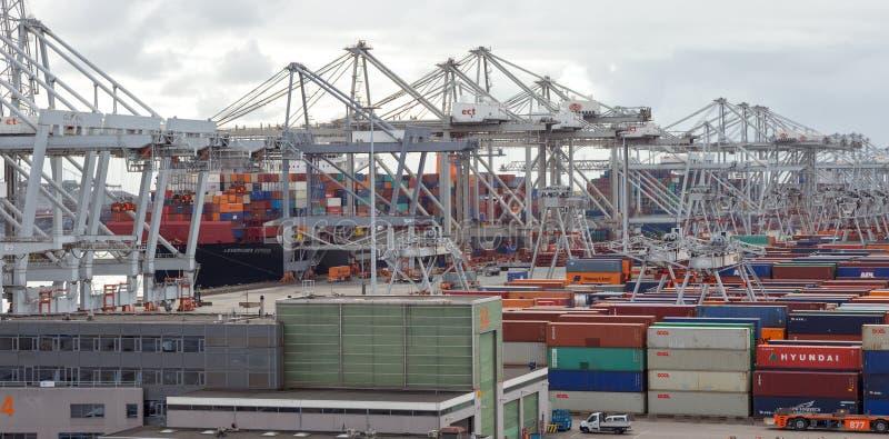 Rottterdam portu wysyłka obraz royalty free