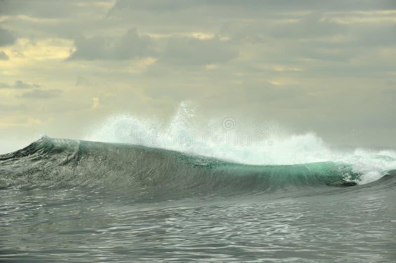 Rottura potente delle onde di oceano Wave sulla superficie dell'oceano fotografia stock libera da diritti
