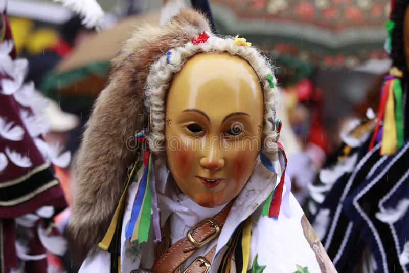 Rottweiler Carnaval stock foto's