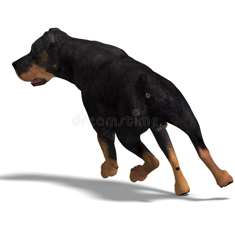 Rottweiler Dog. 3D rendering with clipping path and shadow over white stock illustration