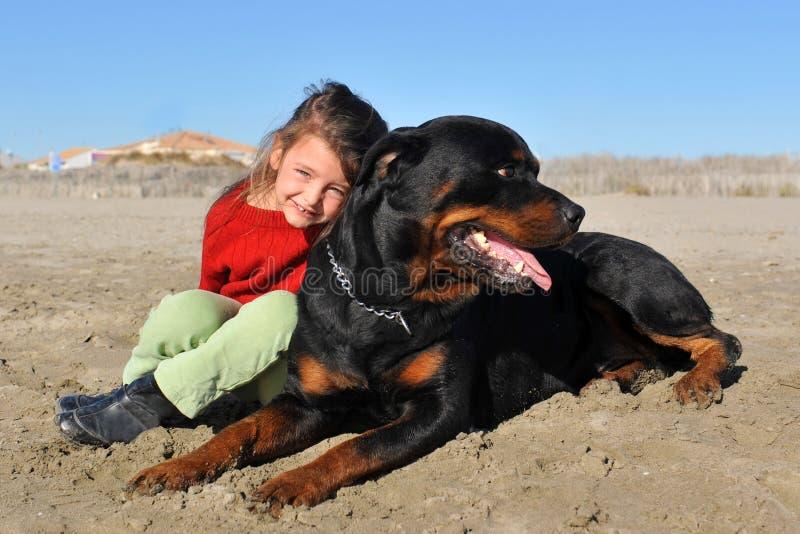 Rottweiler e bambino sulla spiaggia immagini stock libere da diritti