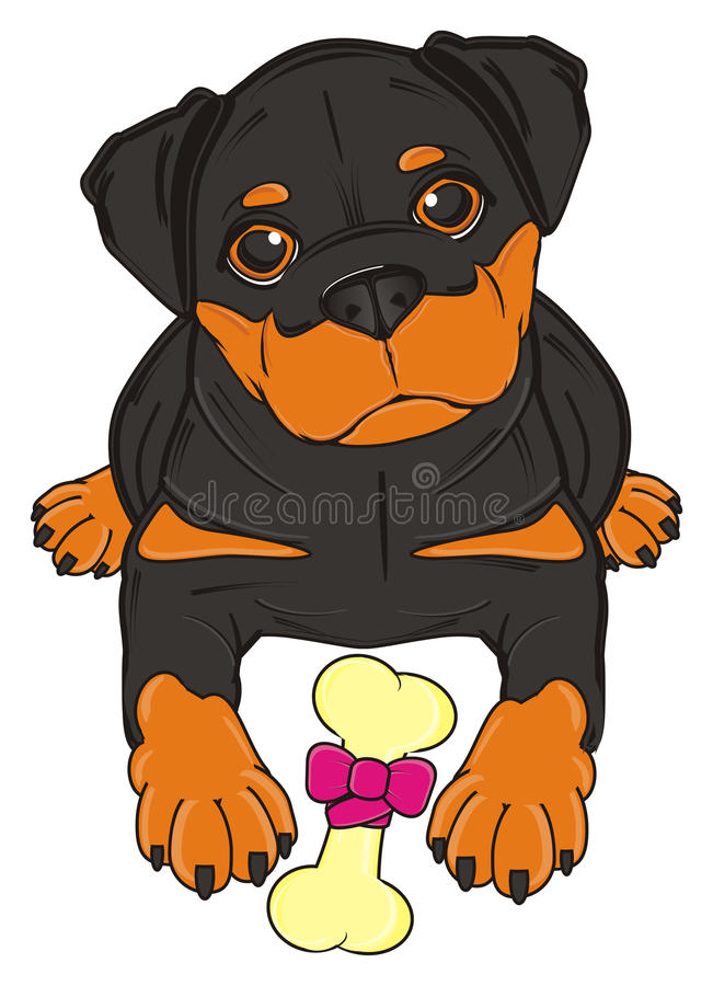 Rottweiler with his food. Rootweiler lying near the bone on ribbon vector illustration