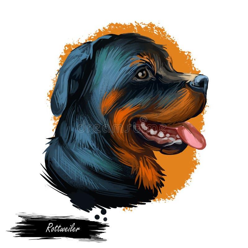 Rottweiler-Hundeporträt lokalisiert auf Weiß Digital-Kunstillustrationshand gezeichnet für Netz, T-Shirt Druck und Welpenabdeckun lizenzfreie abbildung