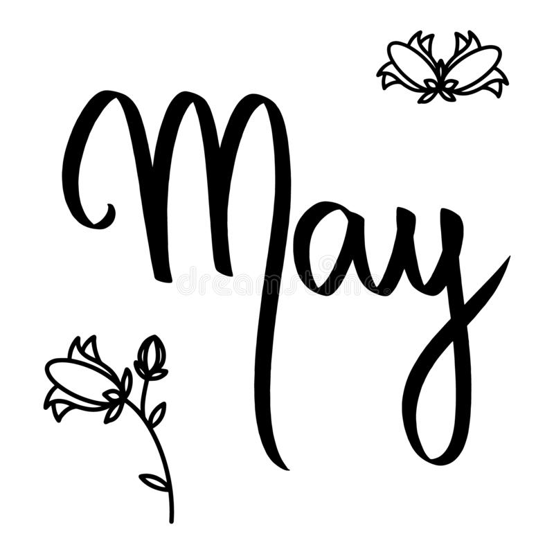 Rotulação da mão da escova de maio do mês no fundo branco, campainhas Cartão do feriado, cartão Sinal do vetor com flores pretas ilustração royalty free