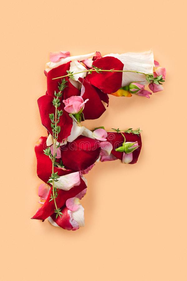Rotule F feito das rosas vermelhas e das pétalas em um fundo branco foto de stock royalty free