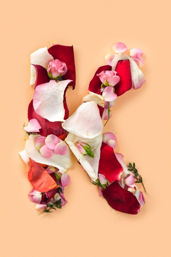 Rotule K feito das rosas vermelhas e das pétalas em um fundo branco foto de stock