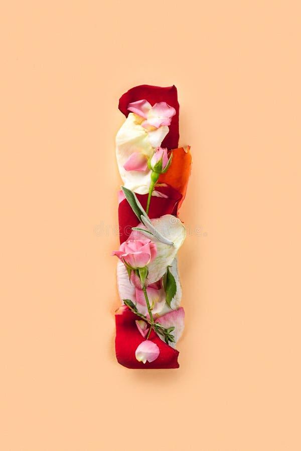 Rotule-me fez das rosas vermelhas e das pétalas em um fundo branco imagem de stock royalty free