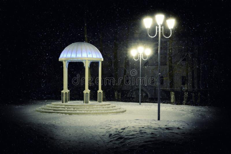 Rotunda en parc d'hiver la nuit photo libre de droits