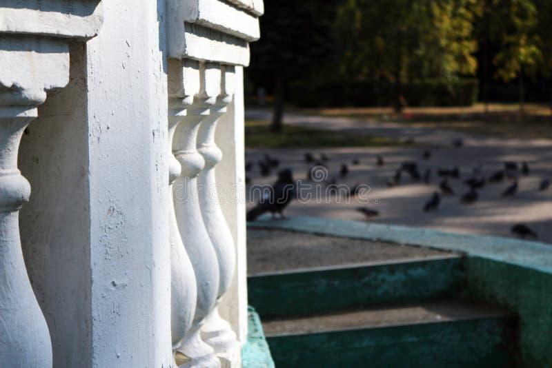 Rotunda in parco immagini stock