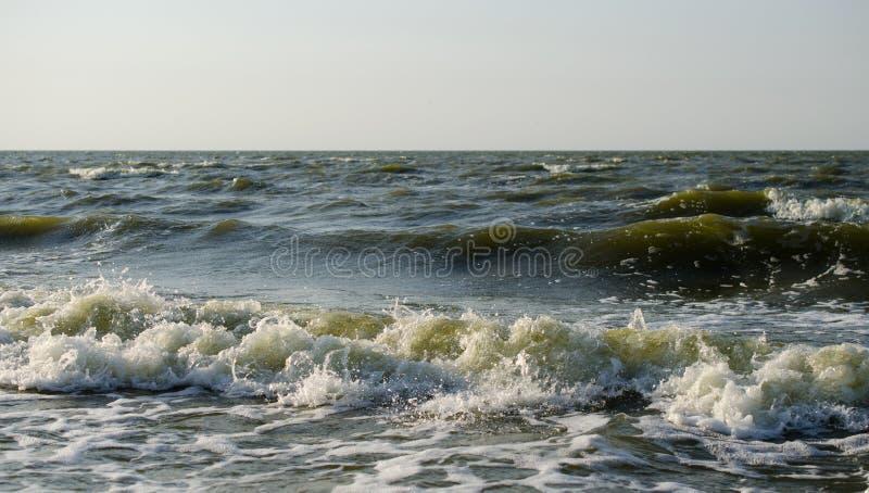 Rotura de las ondas en la costa foto de archivo