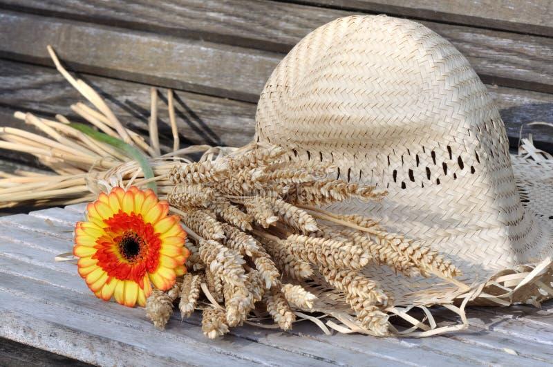 Rotura de verano imágenes de archivo libres de regalías