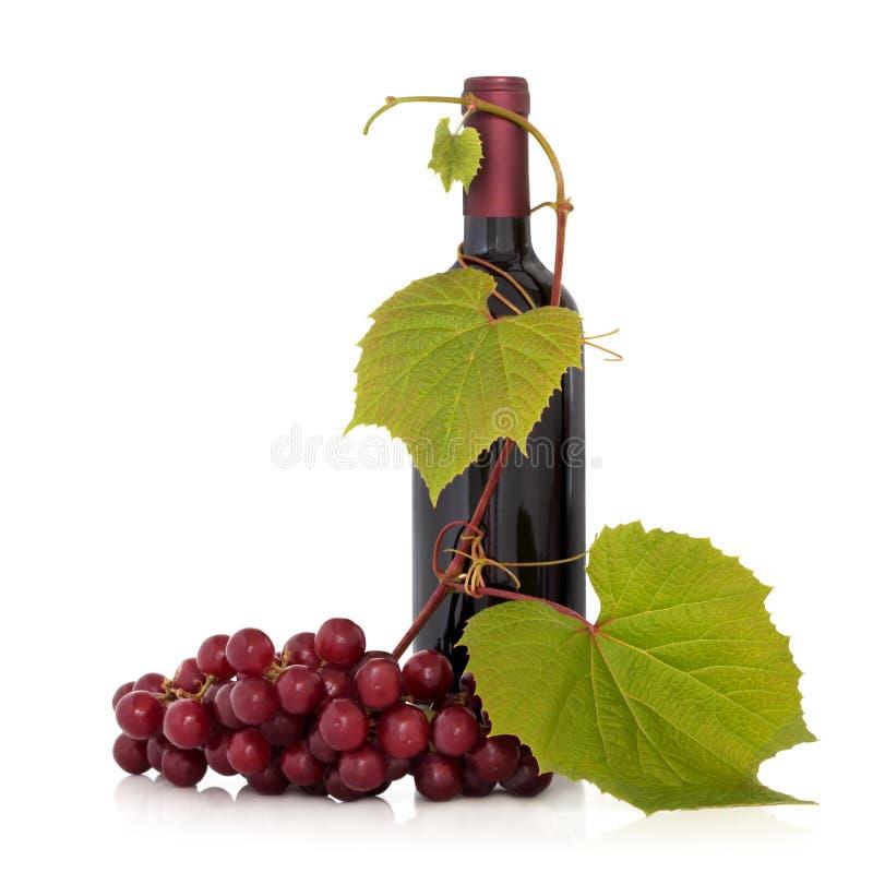 Rotwein und Trauben-Rebe lizenzfreie stockbilder