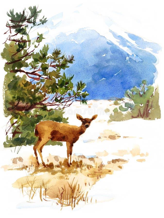 Rotwild-Aquarell-Winter-Tierillustrations-Natur-Berge handgemalt stock abbildung