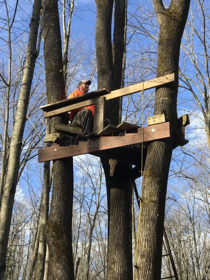 Rotwild-Jäger in einem Treestand stockfotos