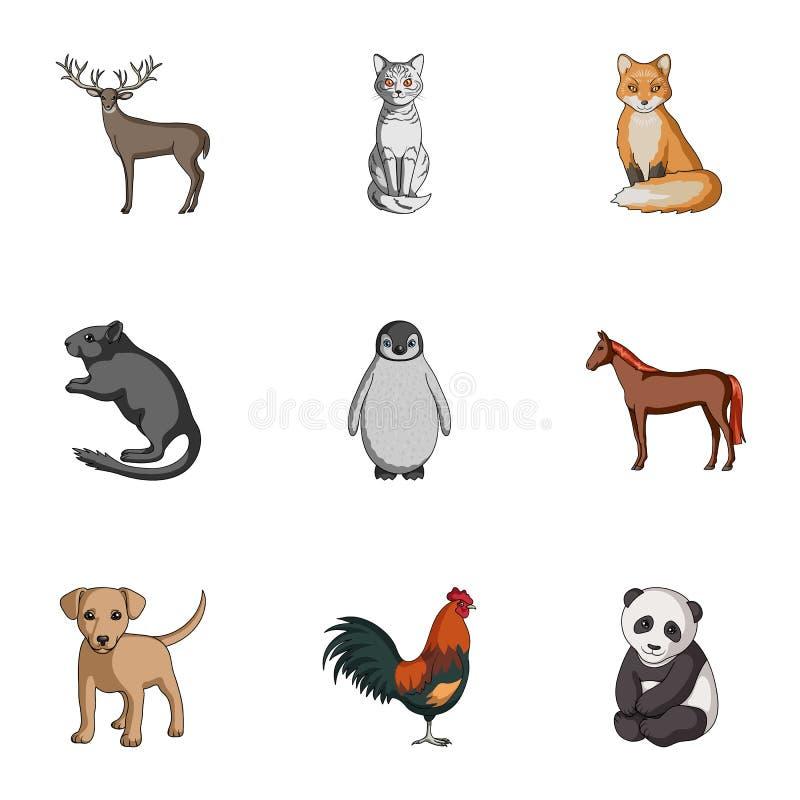 Rotwild, Tiger, Kuh, Katze, Hahn, Eule und andere Tierarten Tiere stellten Sammlungsikonen im Karikaturart-Vektorsymbol ein stock abbildung