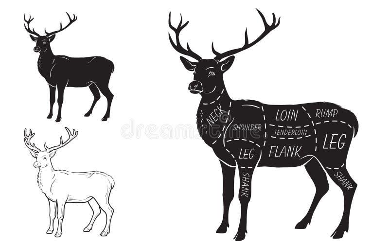 Rotwildfleischschnitte mit Elementen und Namen Kann als Logo verwendet werden Metzger Shop vektor abbildung