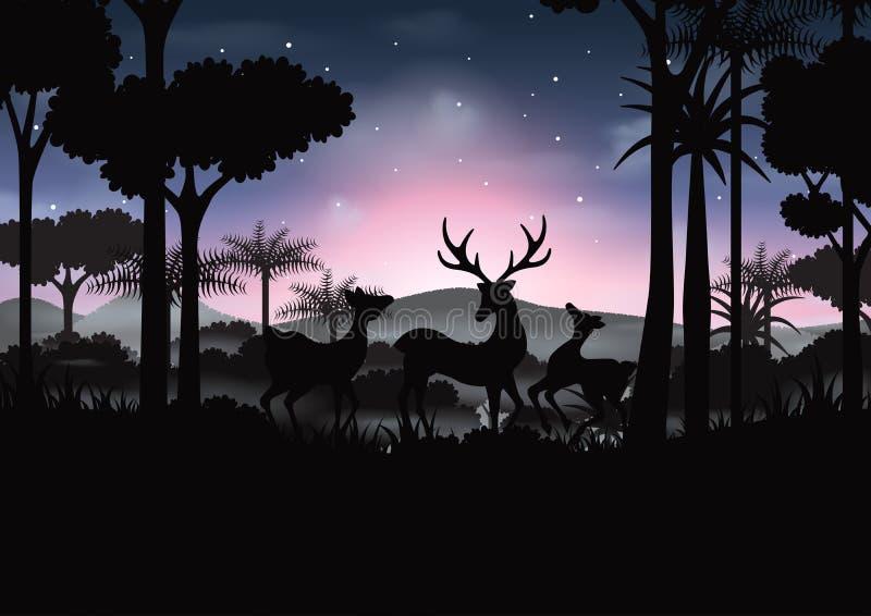 Rotwildwild lebende tiere und grüner Schattenbildnaturwaldhintergrund lizenzfreie abbildung