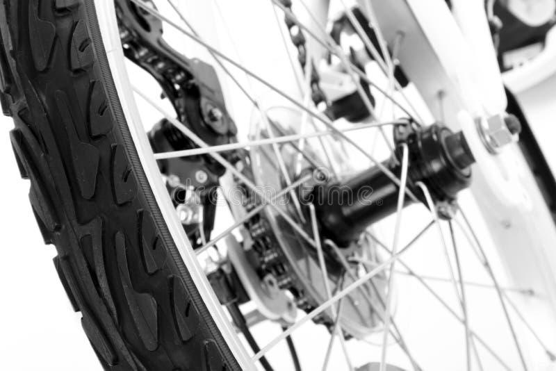 Roue avec le pneu de la bicyclette photo libre de droits