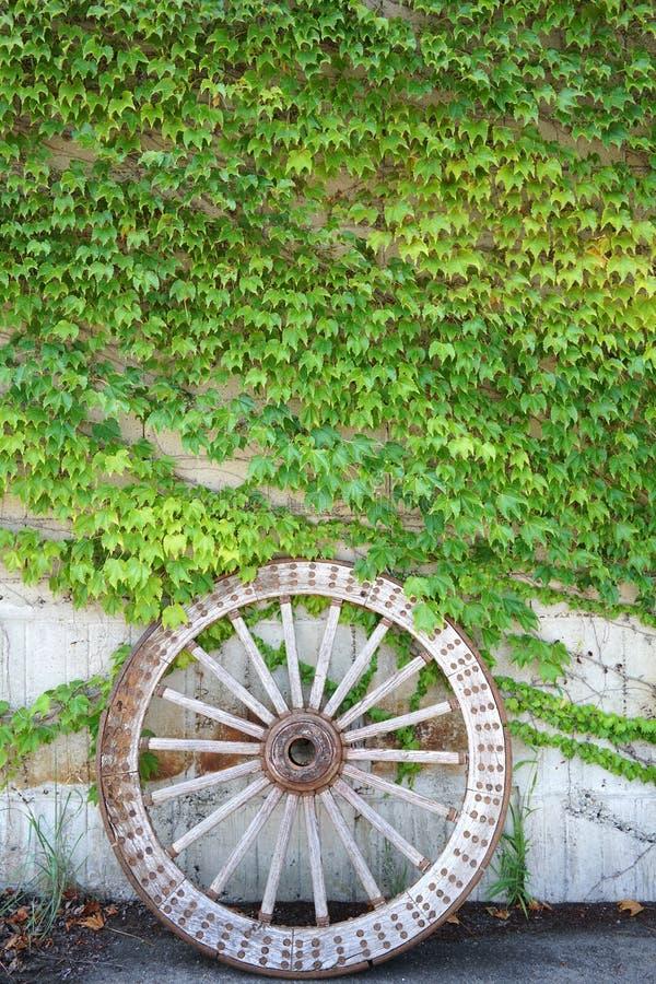 Roue en bois antique de chariot avec les feuilles vertes photos stock
