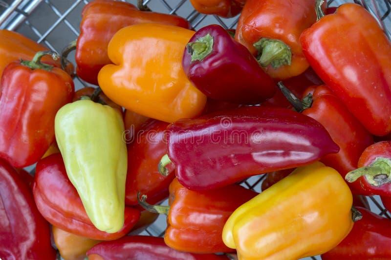 Rouge coloré, orange, paprikas doux jaunes et verts photos libres de droits