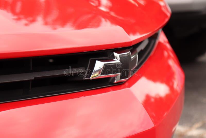 Rouge de camaro de solides solubles images libres de droits