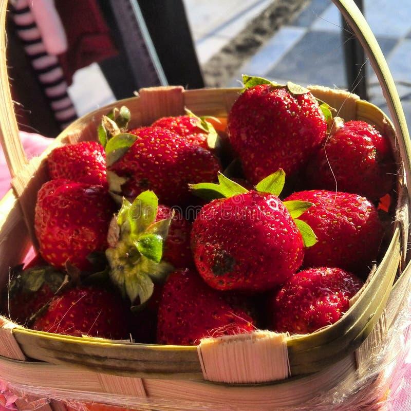 Rouge de fruit image libre de droits