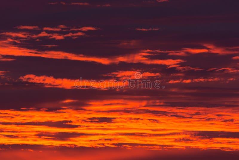 Rouge et coucher du soleil d'été d'or image stock