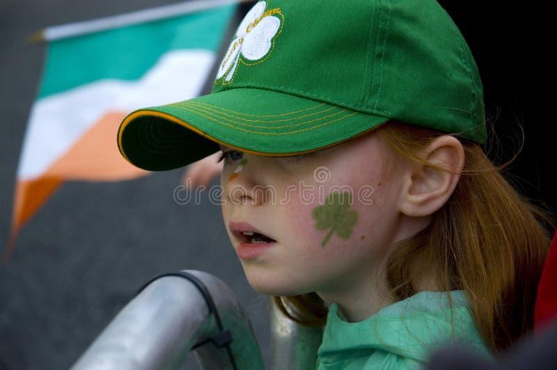 Rouge irlandais photo libre de droits