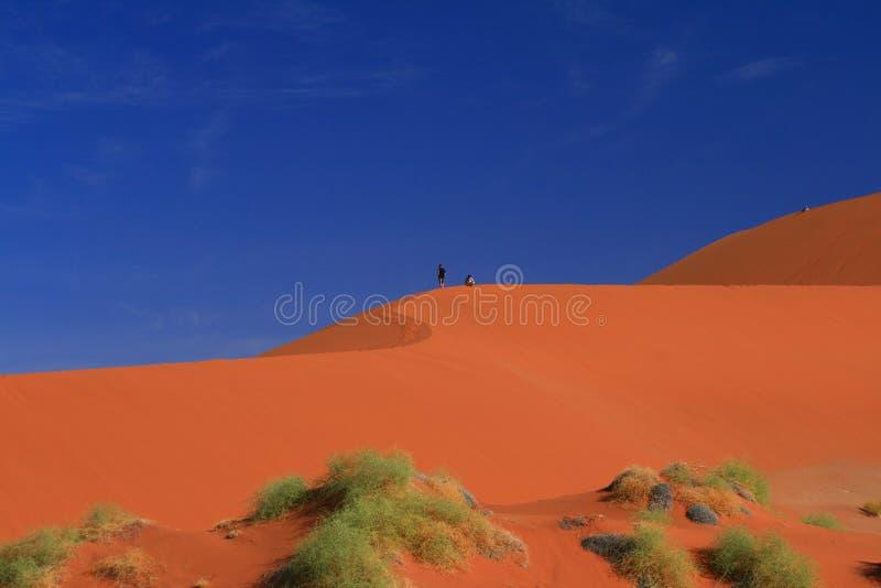 rouge namibien de dune de désert photo libre de droits