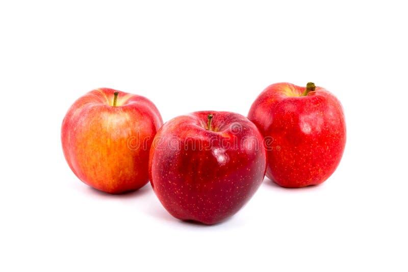 rouge trois de gala de pommes image libre de droits