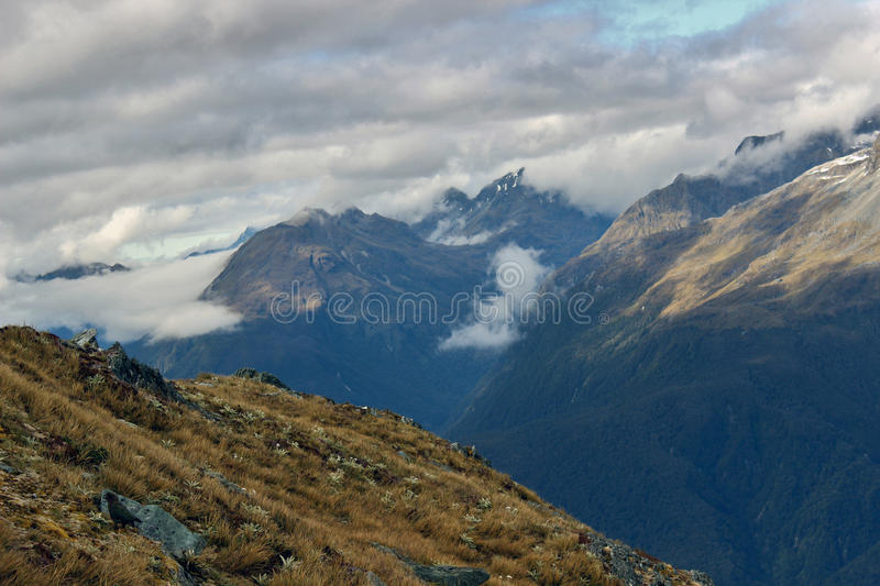 Rough beginnings. South Island New Zealand Track stock photography