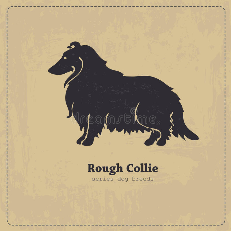 Free Rough Collie Dog Silhouette Royalty Free Stock Image - 53916046