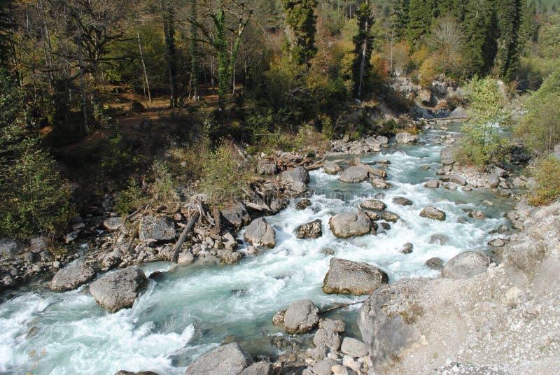 Rough mountain river royalty free stock image