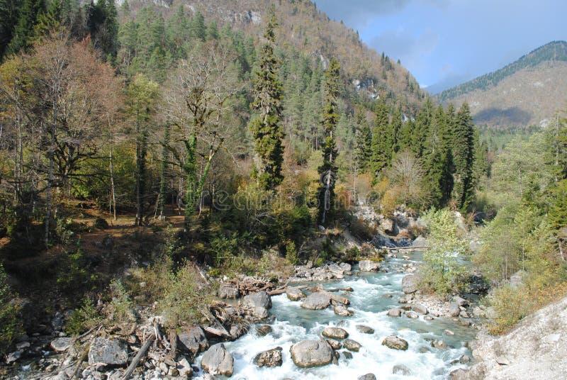 Rough mountain river stock image