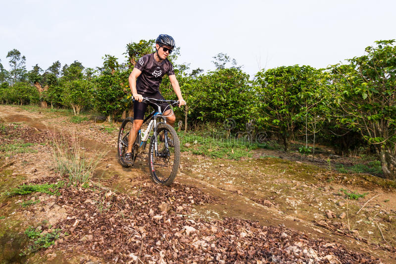 Rough riding in Costa Rica. Heredia, Costa Rica - May 08: Young man riding his mountain bike on rough roads true coffee plantation. May 08 2016 Heredia, Costa royalty free stock photography