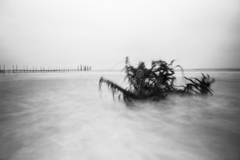 Rough sea at a beach with a long wooden  jetty in the background. Storm at a bathing beach, black and white picture, gloomy mood, rough sea by high waves that stock photo