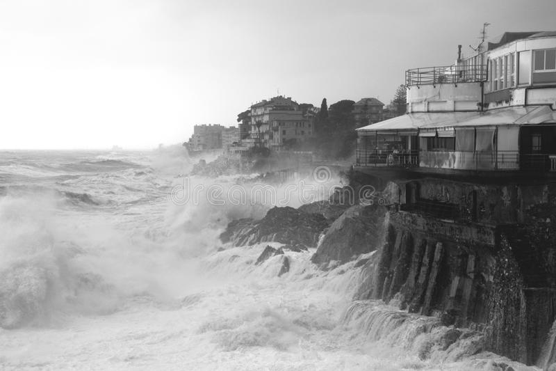 Download Rough seas stock photo. Image of ocean, tropical, coast - 23656008