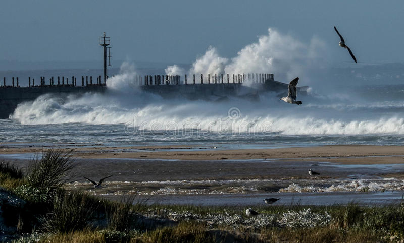 Rough seas. Very rough seas in Port Elizabeth. waves breaking over the pier stock photography