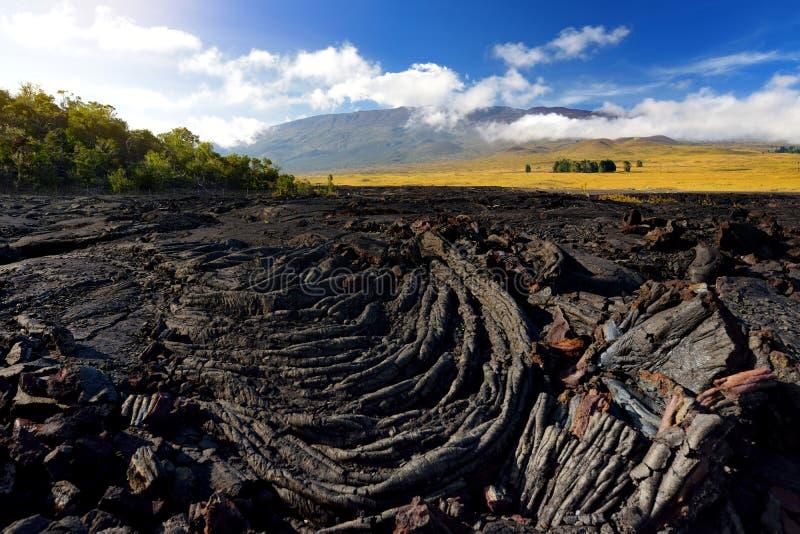 Rough surface of frozen lava after Mauna Loa volcano eruption on Big Island, Hawaii. USA stock photo